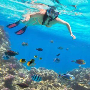 oplev den flotte verden under vandet