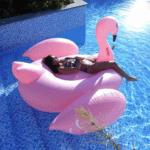 kæmpe flamingo badedyr til voksne