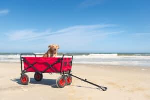 sammenklappelig trækvogn til stranden